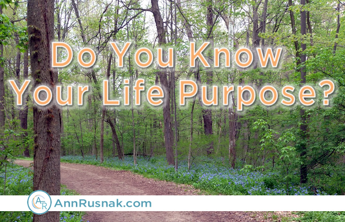 Do You Know Your Life Purpose