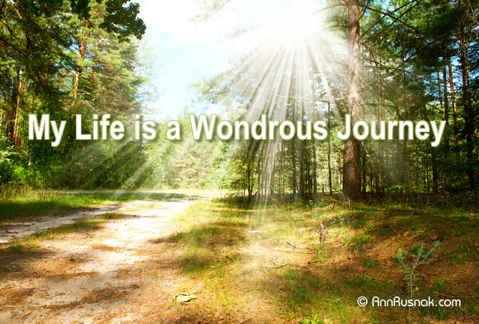 life wondrous journey